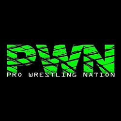 Pro Wrestling Nation