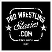 Pro Wrestling Stories