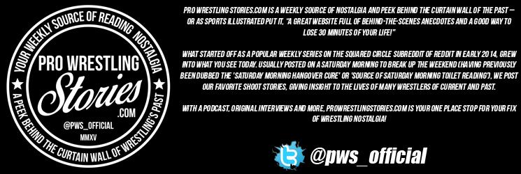 Pro Wrestling Stories