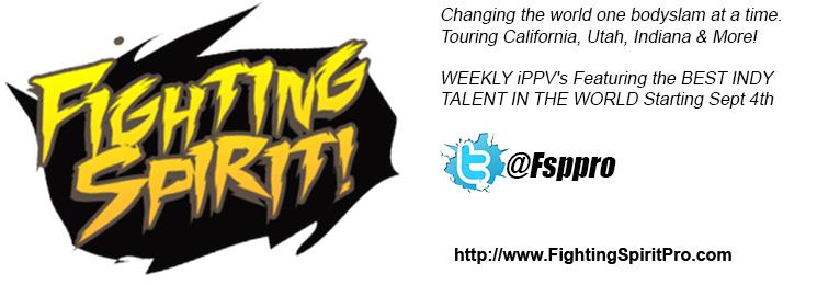 Fighting Spirit Pro