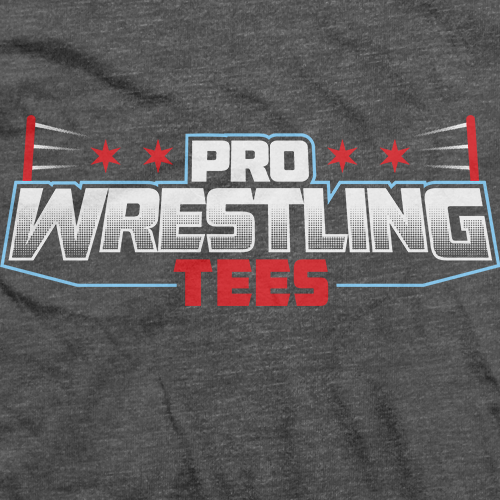 PWTees Vintage Charcoal (Front/Back/Sleeve)
