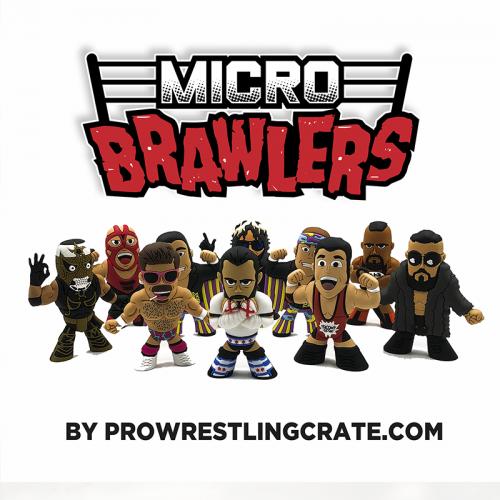 Mystery Micro Brawler Grab Bag