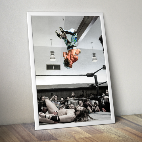 Matt Sydal Sydal High Flyer Print