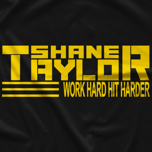 Work Hard Hit Harder