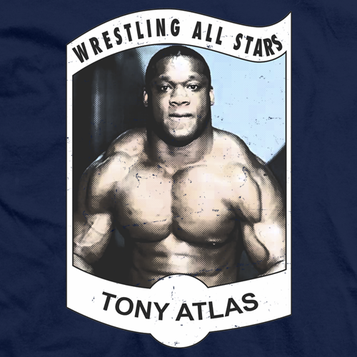 Wrestling All Star