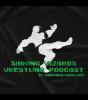 Shining Wizards Computer Gaming T-shirt