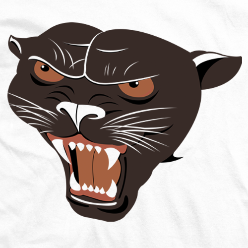 A Rowdy Panther