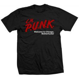 Cm Punk Pro Wrestler D A R E Welcome To Chicago