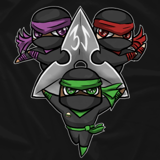 3-S Ninja