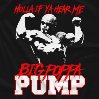 Holla If Ya Hear Me
