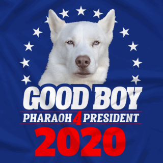 Good Boy 4 President