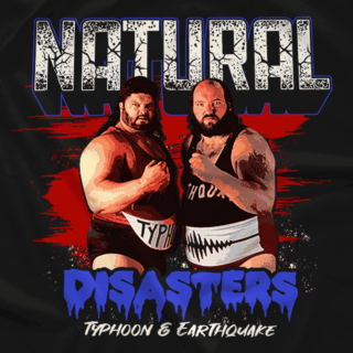 Natural Disasters Retro