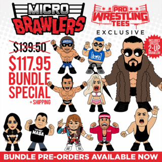 Micro Brawler Wave 3 Bundle - 10 Figures (Only 200 Sets Available)