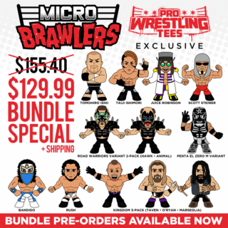 Micro Brawler Wave 4 Bundle - 12 Figures (Only 200 Sets Available)