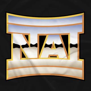 NAI Retro Logo