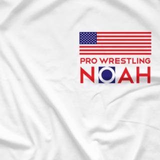 NOAH Flag US