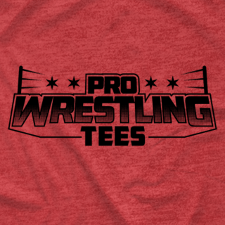PWTees Black Logo Shirt (4 Colors Only $5.99)