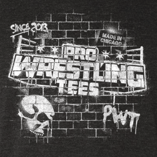 Pro Wrestling Tees Skewed Flag Logo T-shirt