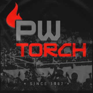 PWTorch Brand