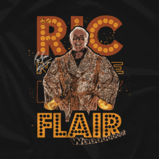 Ric Flair Retro