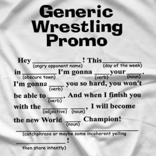 Generic Wrestling Promo