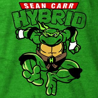 TMN-Hybrid