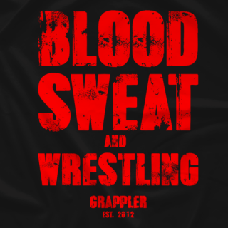 GBA Blood Sweat and Wrestling