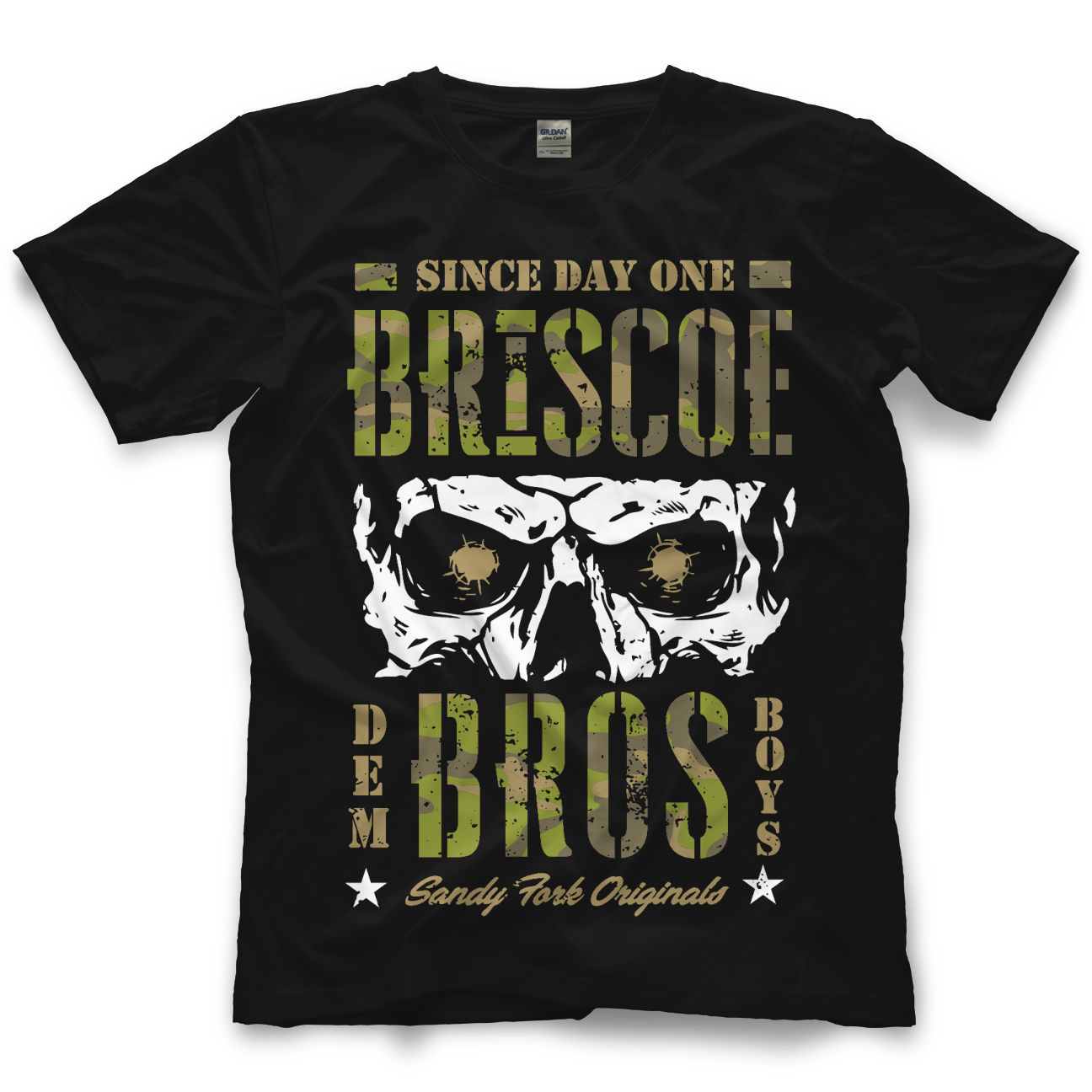 Pro Wrestling Crate | Past Crate Shirts